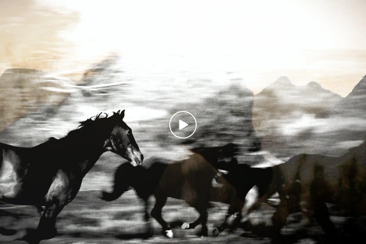 Texas Tourism Travel Marketing Case Study Cowboy Experience