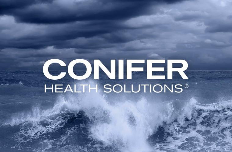 conifer_thumb